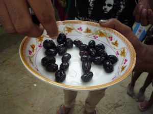 We were offered gam (pronounced jam) fruits to eat, grown locally in the village.  Sweet/sour flavours with a large stone in the middle.  Delish!