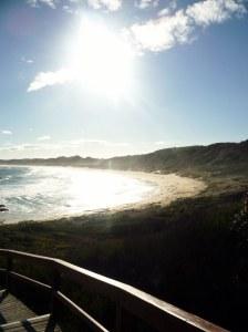 Windswept beach at Marlo