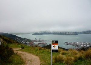 View of Lyttleton from the summit of the Bridle Path Walk