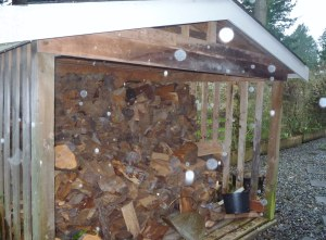 No, your eyes are not blurry.  Those are raindrops obscuring the wood shed!