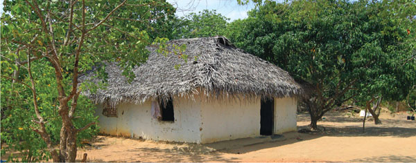 There were a handful of traditional-style homes still to be seen.